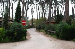 zonvakantie-toscane-gallery-camping-6