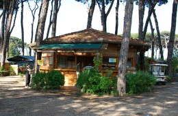 zonvakantietoscane-camping-receptie-800x600